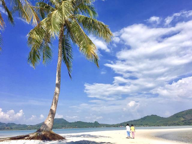 Strand mit Palme und Kinder, die sich an der Hand halten