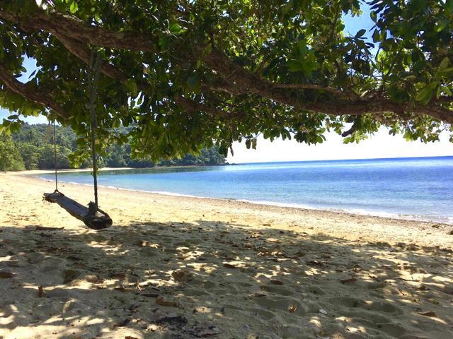 Schaukel am Strand unter Bäumen