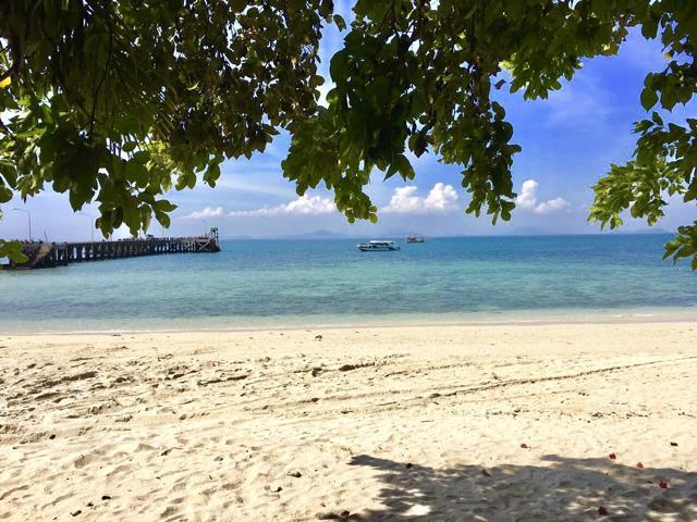 Thailand Reisetipps, Quallen im Meer