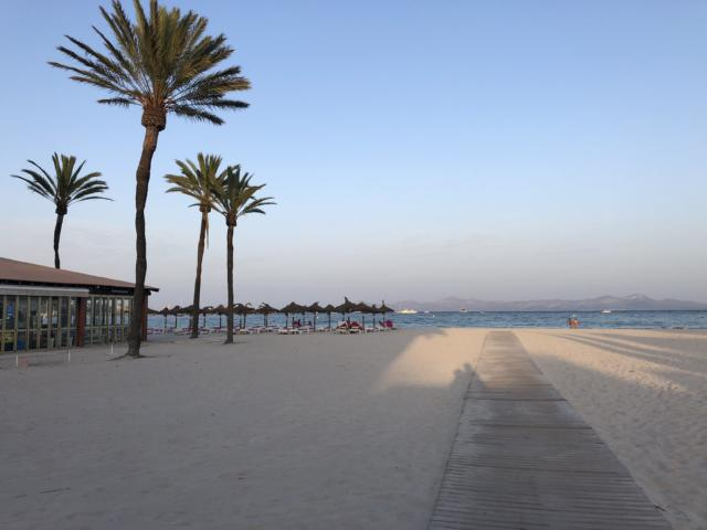 Astoria Playa Alcudia, Palmen am Strand von Alcudia