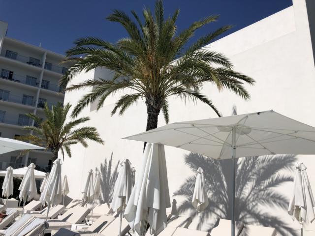 Astoria Playa Alcudia, Weiße Liegen und Schirme unter Palmen