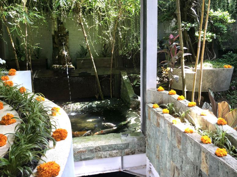 Becken mit großen Fischen im Clear Cafe Ubud
