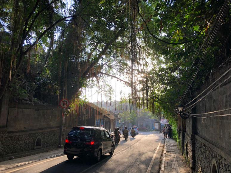 Autos und Roller auf Straße in Ubud Bali