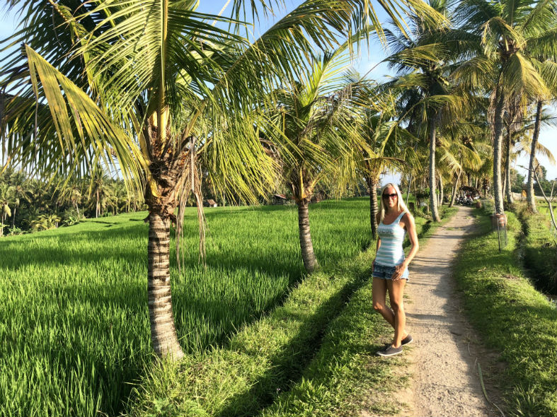 Weg durch Reisfeld in Ubud Bali