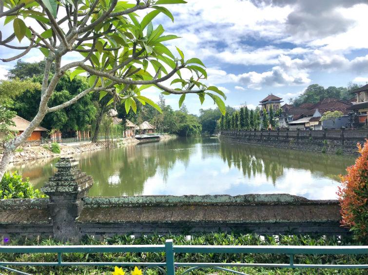 Fluss mit hereinragendem Baum vor Tempelanage Bali
