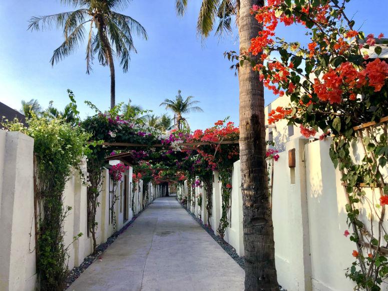 Kleine Straße mit bunten Blumen