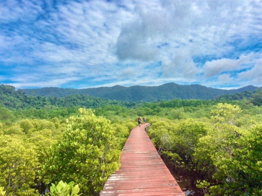 Mangroven Hideway Koh Chang, Steg durch grüne Mangroven mit Blick auf Berge