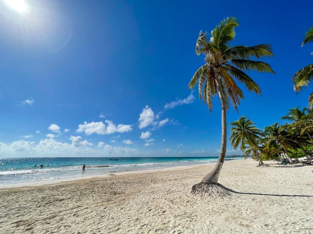 Weißer Sand, Palme und Meer