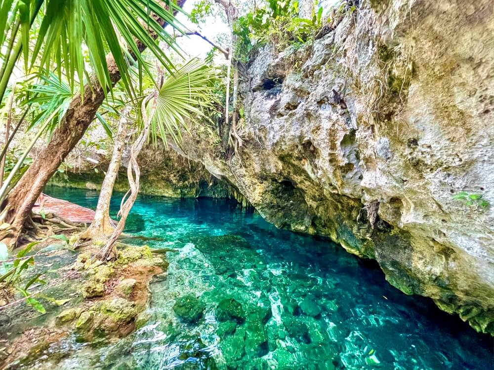 Grün-blaues Wasser in der Gran Cenote